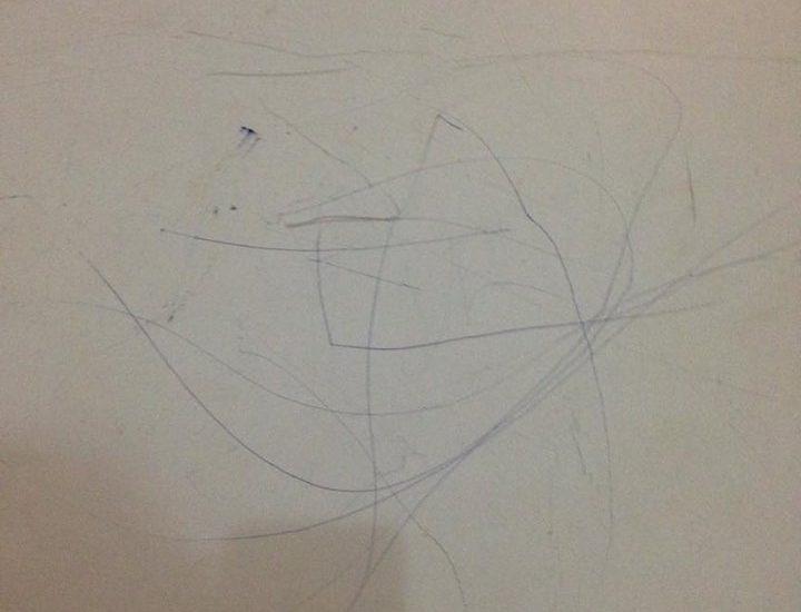 Les twins ont inauguré artistiquement les murs du salon