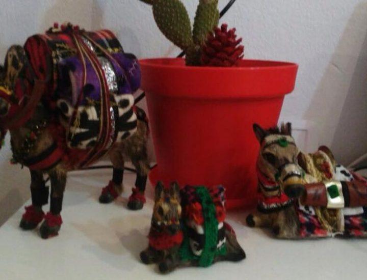 Achetez un âne pour aider un artisan
