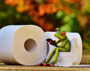 Notre meilleur solution pour des WC propres