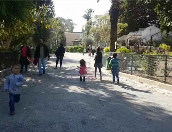 Le Zoo du Belvedere, un super programme avec les enfants